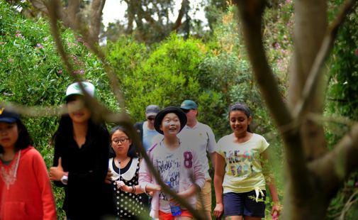 Bushwalking at Lord Somers Camp